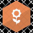 Flower Plant Bloom Icon