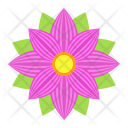 Flower Astra Nature Icon