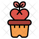 Flower Grow Plant Icon