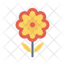 Flower Camomile Bloom Icon