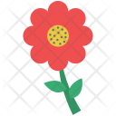 Flower Daisy Nature Icon