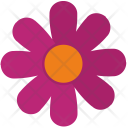 Pink Rose Plant Icon