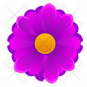 Beautiful Violet Pink Icon