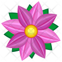 Violet Pink Astra Icon