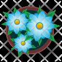 Beautiful Flowers Pot Icon