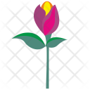 Gift Rose Plant Icon