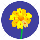 Yellow Round Nature Icon