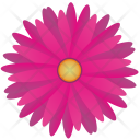Pink Red Spring Icon