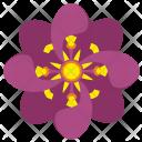 Rose Bud Plant Icon