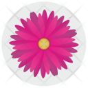 Red Pink Label Icon