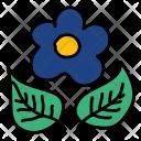 Flower Plant Leaf Icon