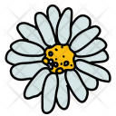 Flower Nature Blossom Icon