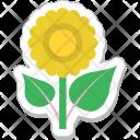 Flower Daisy Sunflower Icon