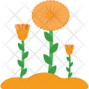 Flower Spring Blossom Icon
