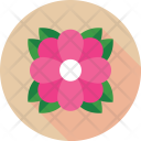 Flower Daisy Flora Icon