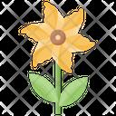 Flower Decorative Flower Generic Flower Icon