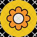 Flower Round Shape Icon