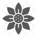 Flower Blossom Flora Icon