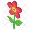 Flower Outdoor Plant Nature Icon