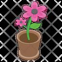 Pot Plant Flower Outdoor Plant Icon