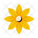 Petal Beautiful Flower Icon