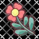 Spring Flower Season Icon