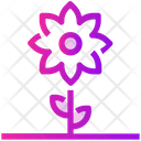 Spring Flower Plant Icon