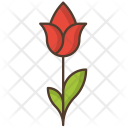 Flower Rose Nature Icon