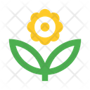 Flower Plant Herb Icon