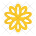 Flower Aster Icon