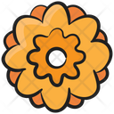 Flower Blossom Floweret Icon