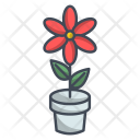 Flower Ecology Spring Icon