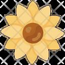 Flower Natural Flower Decorative Flower Icon