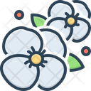 Flower Bloom Garden Icon