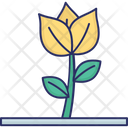 Flower Flower Bud Nature Icon