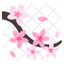 Blossom Cherry Floral Icon