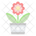 Flower Beautiful Plant Icon