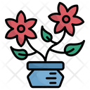 Flower Botanical Flower Pot Icon