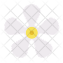 Flower Floral Nature Icon