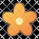 Flower Blossom Petals Icon