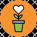 Flower Pot Flowers Icon