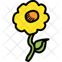 Flower Easter Nature Icon