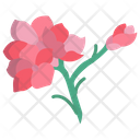 Flower Floral Blossom Icon