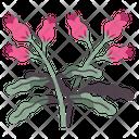 Flower Spring Leaf Icon