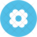 Flower Daisy Bloom Icon