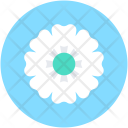 Flower Petals Floral Icon