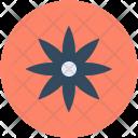 Flower Star Shape Icon