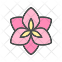 Flower Amaryllis Blossom Icon
