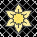 Flower Daffodil Blossom Icon
