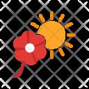 Flower In Sunlight Icon